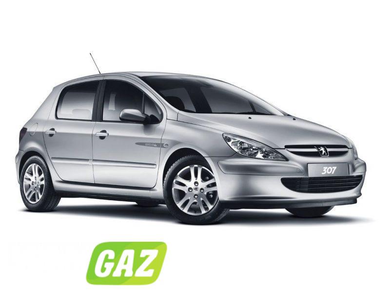 установка ГБО на Peugeot 307